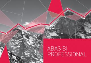 abas_BI_Pro